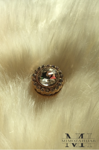 Magnetic brooch Precious
